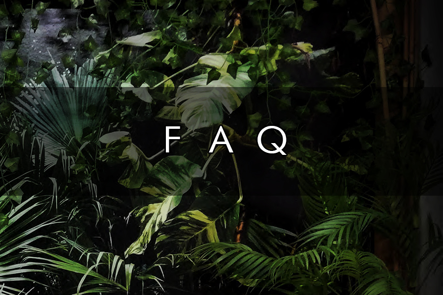 faq banner categoria